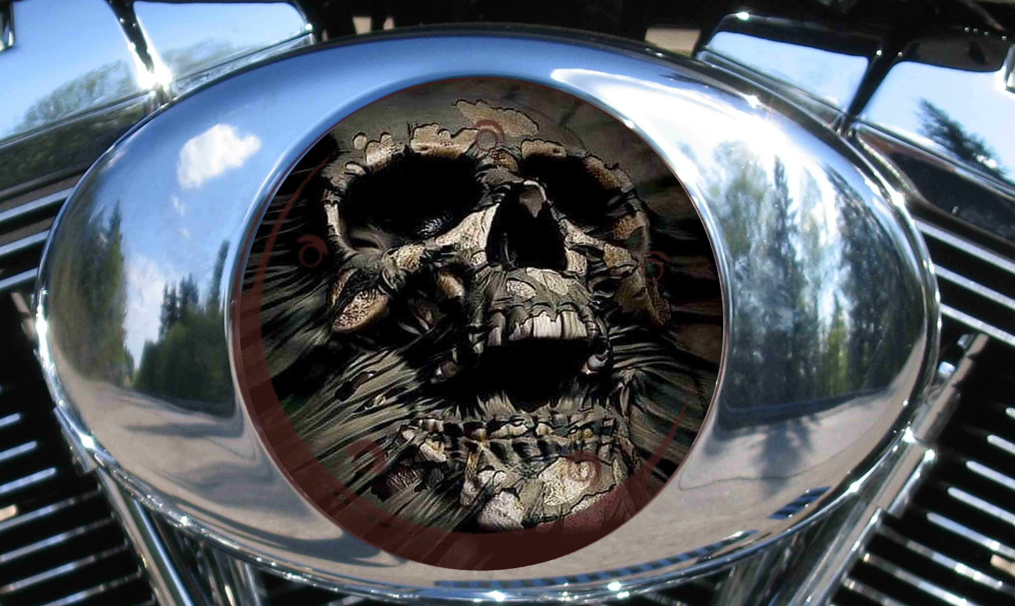 Harley Air Cleaner Cover - FOSSIL SKULL