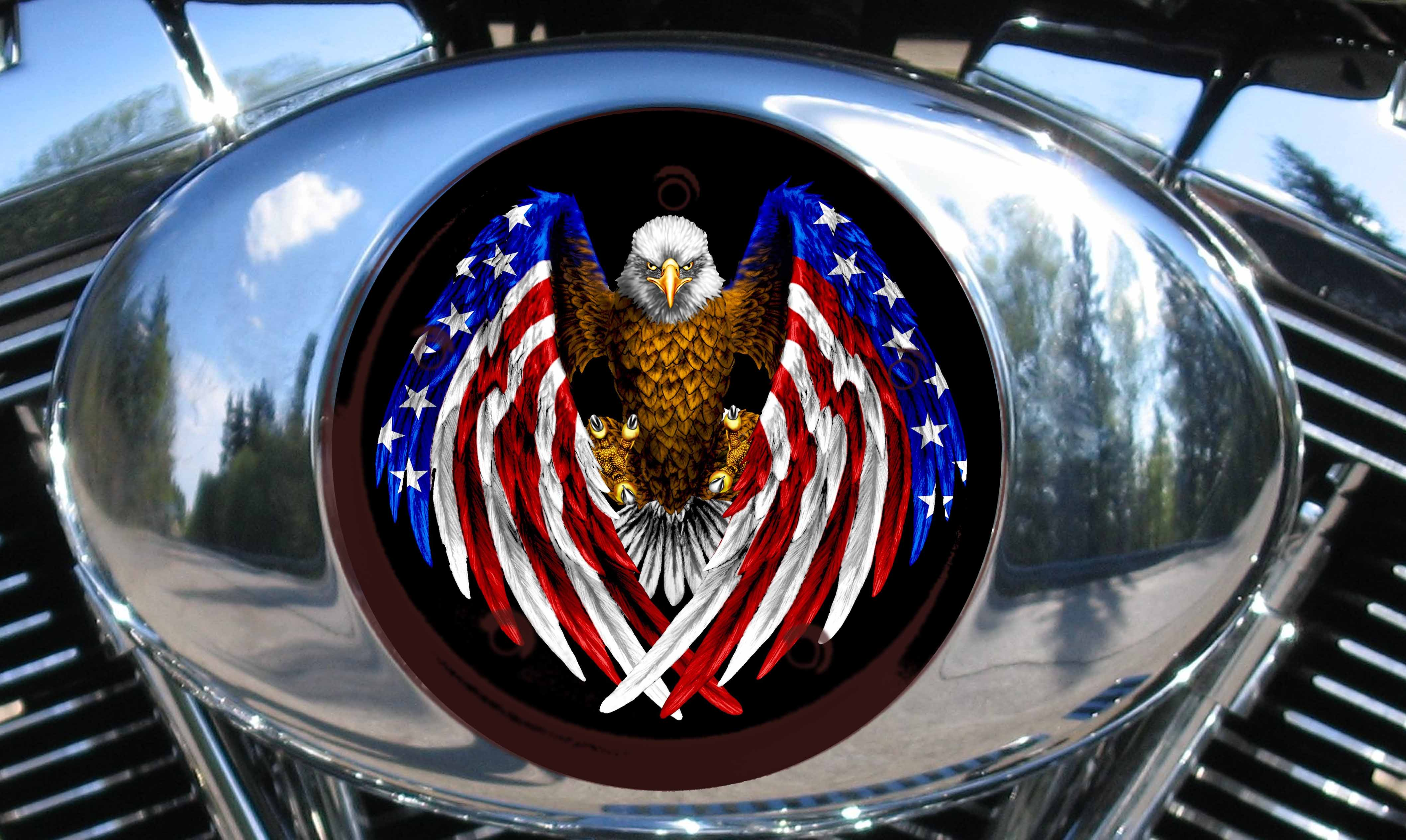 AIR CLEANER INSERT 1999-2014 MODELS EAGLE/FLAG wings